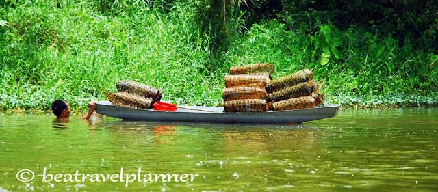 Vietnam - Pescatore di gamberi