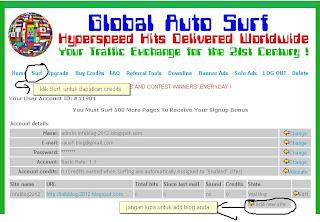 Global AutoSurf