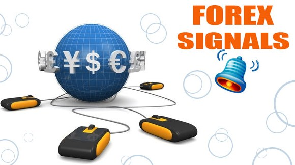 Signal forex yang terbaik