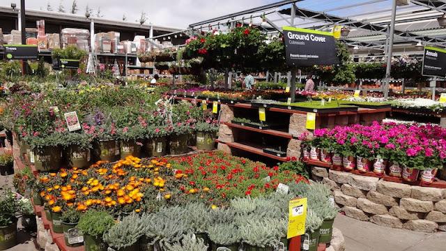 Llego La Primavera Y Tambi N Los Proyectos Con Home Depot