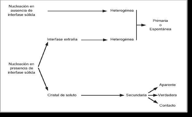 Clasificación de la nucleación. Fuente: (Botsaris, 1980).