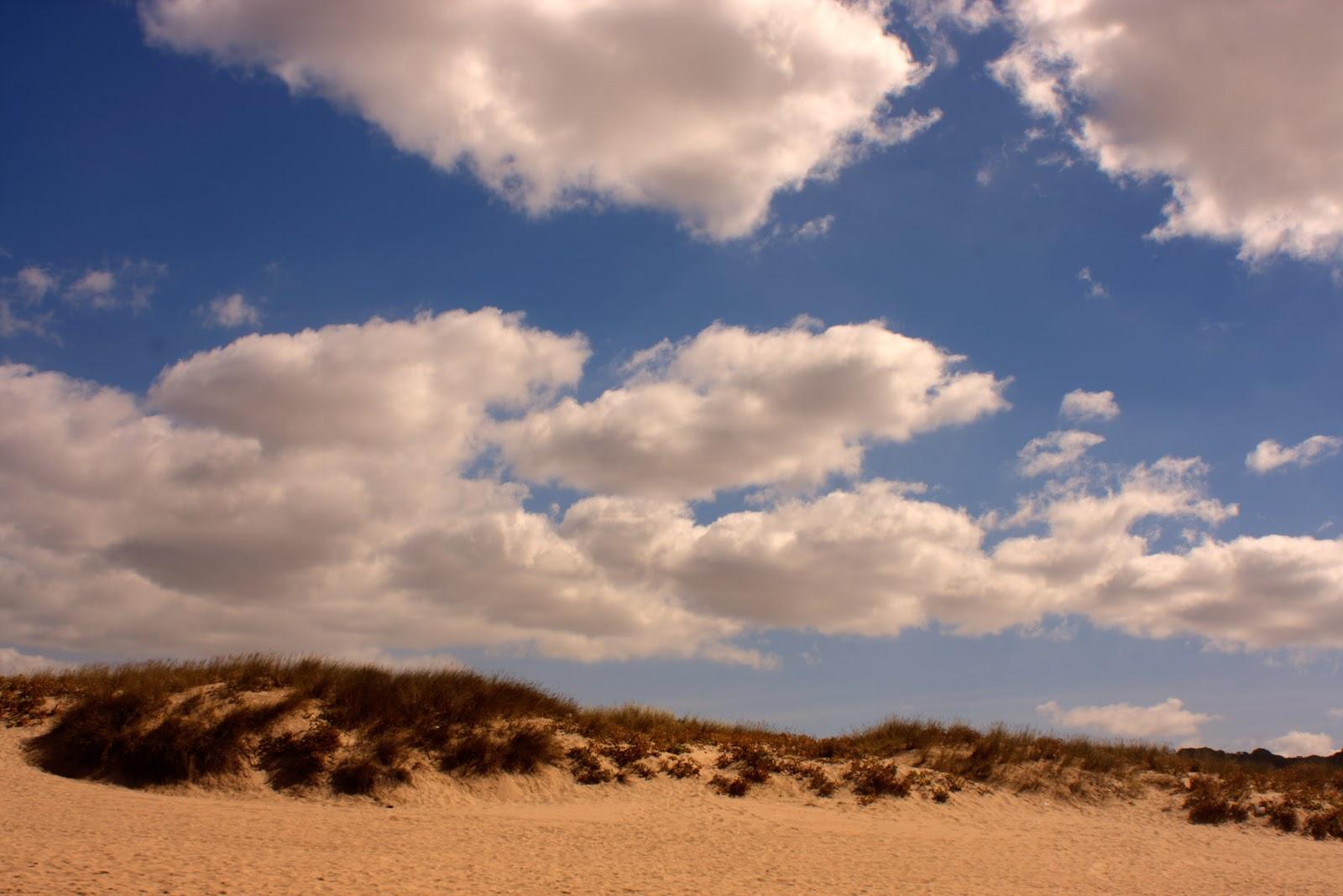 """alt=""""beach, dunes, cloudy, sky"""""""