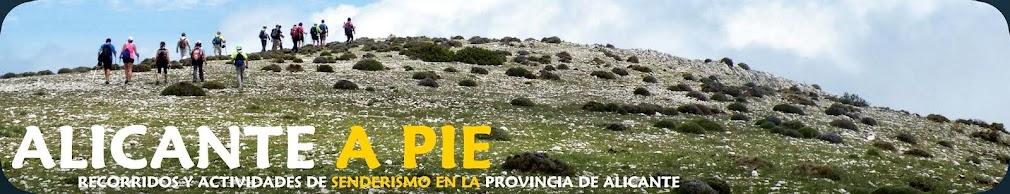 Alicante a pie