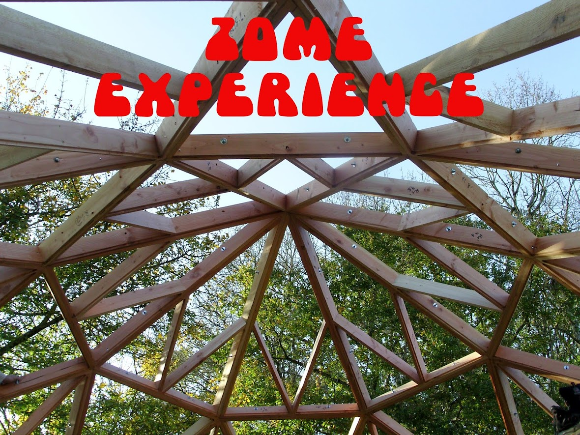 ZOME EXPERIENCE