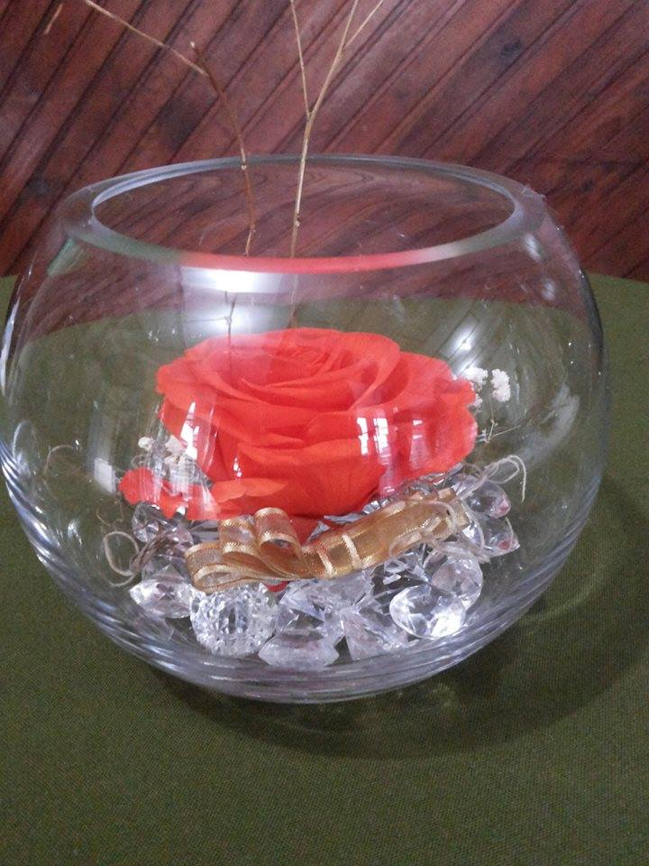 Rosas Naturales Preservadas Naranjas ¡Duran 4 Años! Santa Ana, El Salvador
