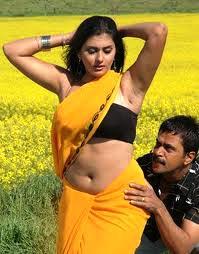 namitha-hot-in-saree-south-actress-4