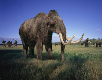 amazing-extinct-animals-resurrected-by-cloning-woolly-mammoth