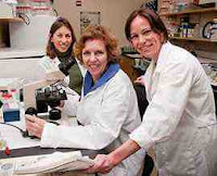 Toxoplasma - 50% lebih populasi manusia terjangkit parasit ini