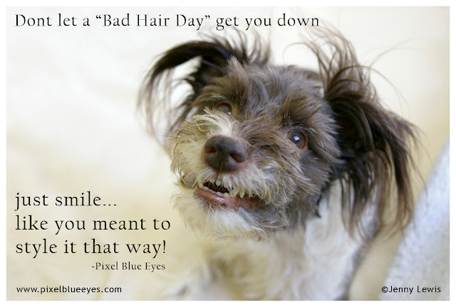 "Pixel says ""Don't let a bad hair day get you down. Just smile...like you meant to style it that way!"""