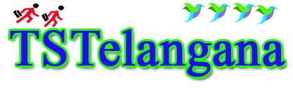 Meesevawarangal.com