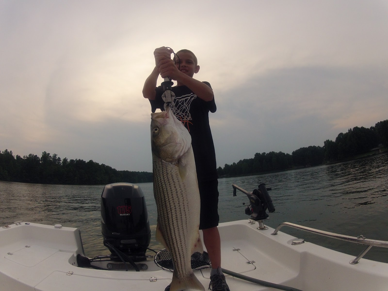 central virginia outdoors lake anna striper fishing