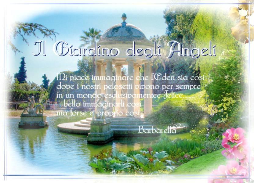 Vi dico il cuore cosa dice il giardino degli angeli - Il giardino degli esperidi ...