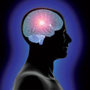 Efek Misterius Puasa Bagi Otak Kita [ www.BlogApaAja.com ]