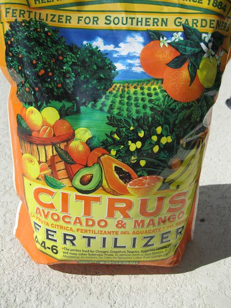 Citrus Tree Fertilizer
