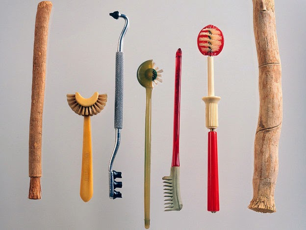 Tywkiwdbi Quot Tai Wiki Widbee Quot Toothbrushes Tooth Worms