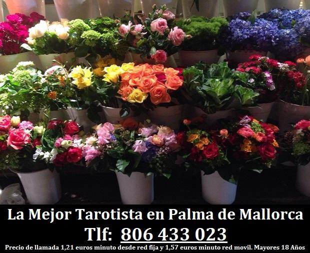 La Mejor Tarotista en Palma de Mallorca
