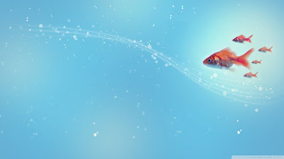 goldfish wallpaper