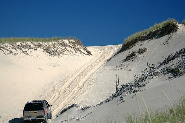 Get Out and See the Fabulous Sand Dunes of Provincetown With Art's Dune Tours