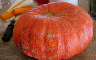 for a pumpkin that was a sweet flavourful eating pumpkin