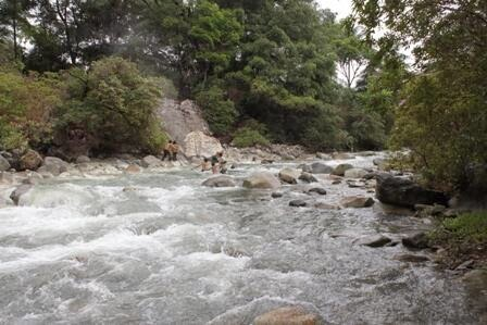 Image result for Sungai Lau Renun