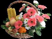 Khasiat Buah & Bunga