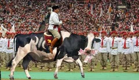 Gambar Lucu Prabowo