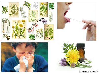 plantas-medicinales-resfriado