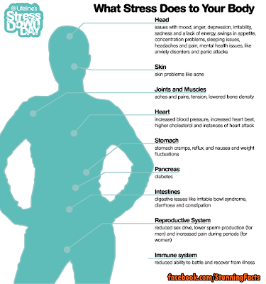 What Stress Does to Your Body