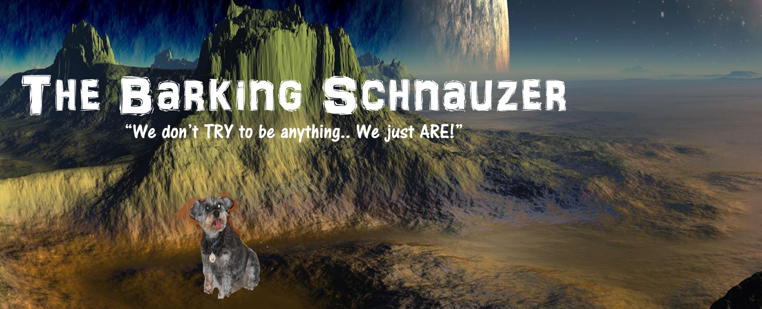 The Barking Schnauzer
