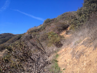 View southwest on the east ridge en route to Summit 2843, Angeles National Forest