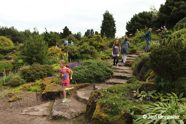 botanic gardens, Edinburgh,
