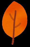 落ち葉のイラスト4
