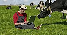 I giovani marchigiani scelgono l'agricoltura. Si ritorna in campagna. Finalmente