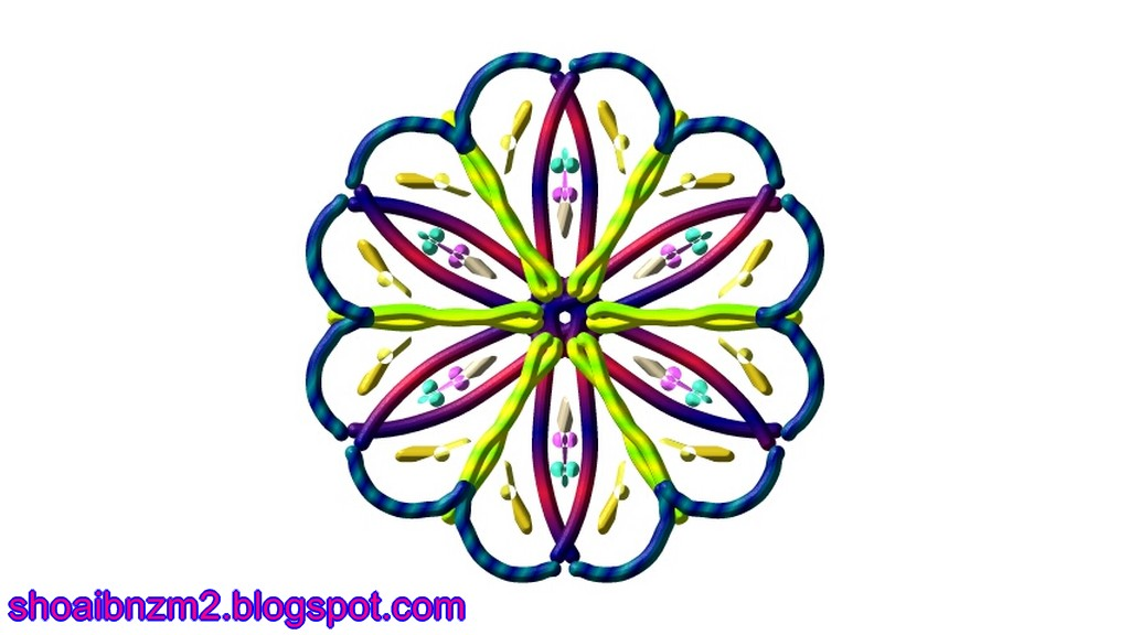 Colour Floral Shape Art Designs Patterns 2013