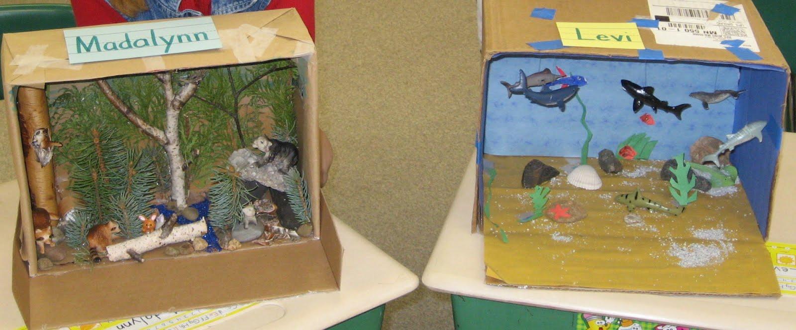 First Grade Fun Habitat Dioramas