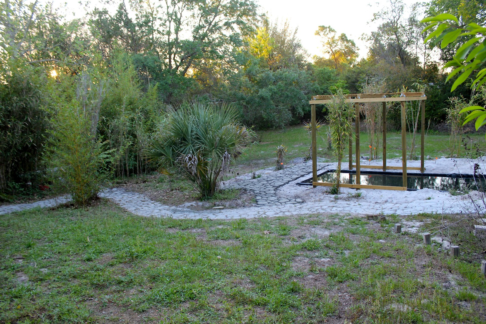 This is a kind of broad view of the backyard space The existing pond