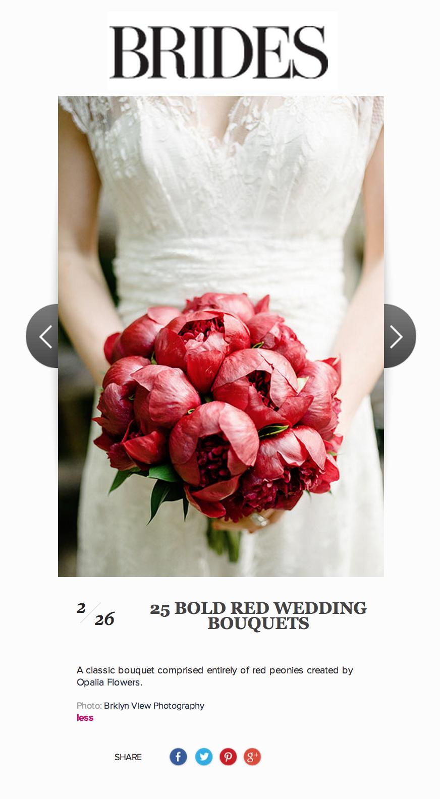 Prospect Park Brooklyn Wedding Photographer