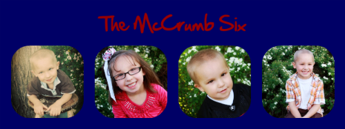 The McCrumb 6