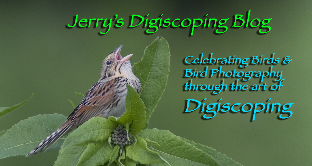 Jerry's Digiscoping Page
