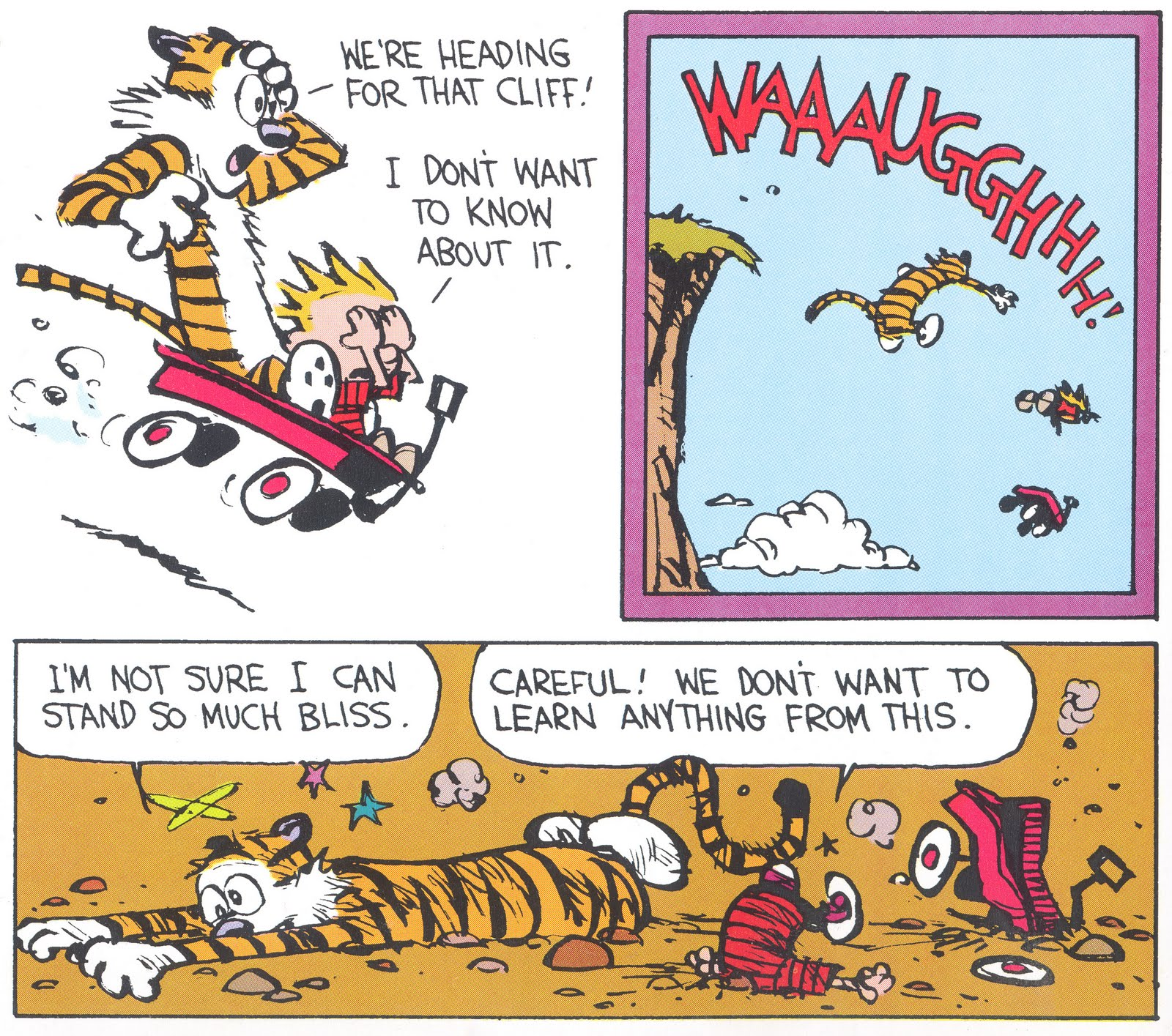 Ignorance+is+Bliss Calvin and Hobbes