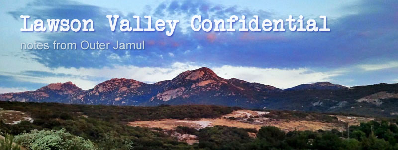Lawson Valley Confidential