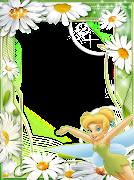 CAMPANITA (daisy blanca)