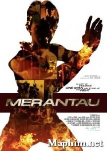 Xem phim chien binh Merantau |phim chien binh Meranrau \maphim.net