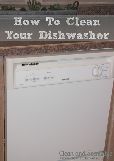 How To Clean Your Dishwasher The Household Organization