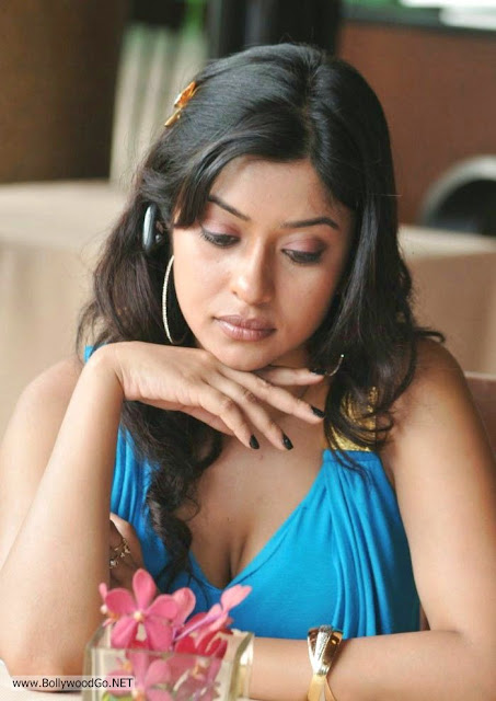 Payal ghosh close up - (6) -  Payal Ghosh Bluedress hot pics