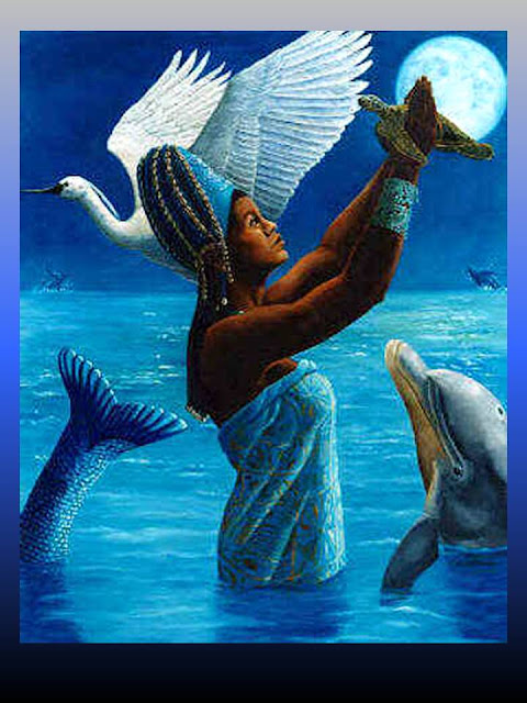 Yemany-a en el mar jugando con los delfines