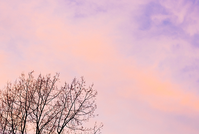 pink clouds in twilight sky