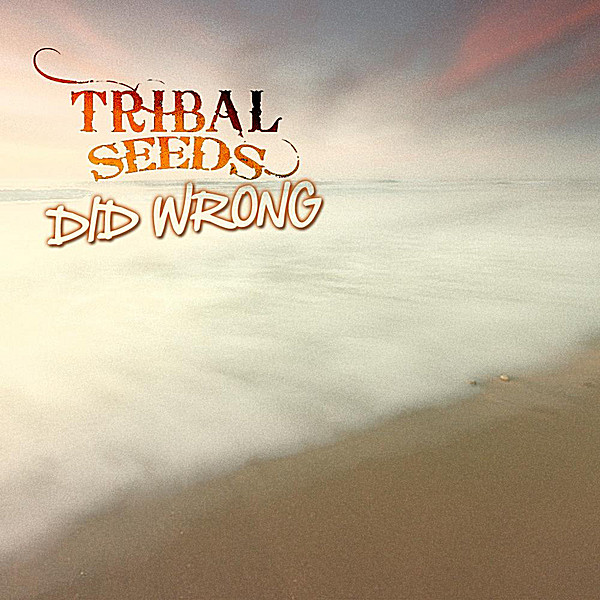 Tribal Seeds - Did Wrong - Single Cover