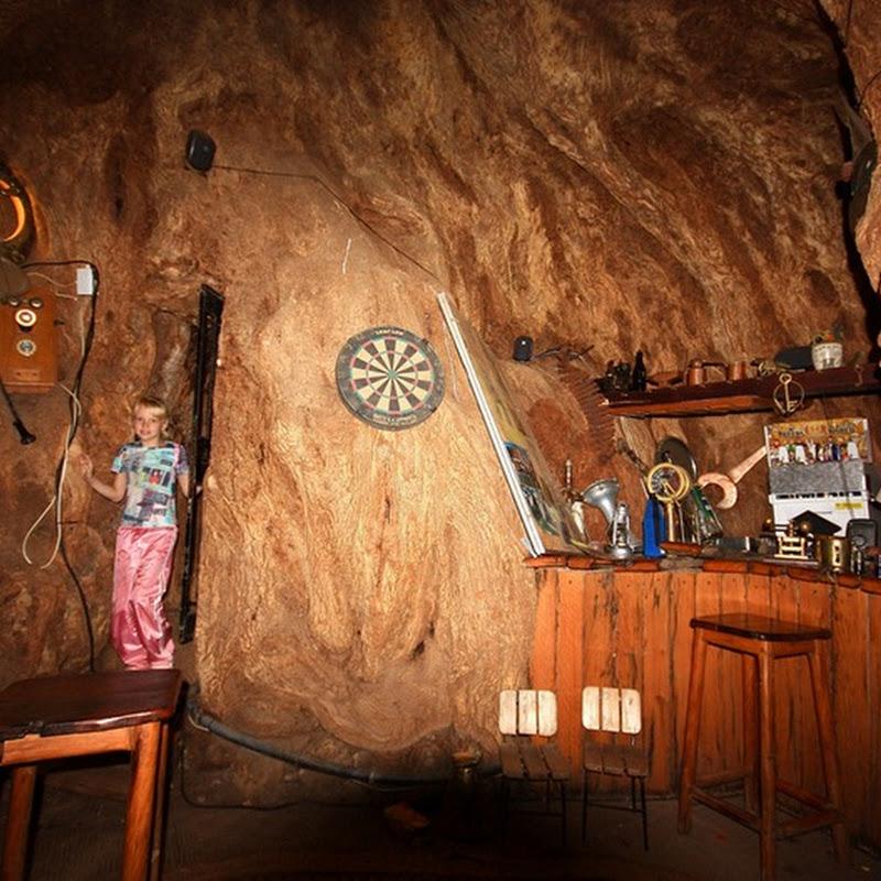 Sunland Baobab Pub, un bar en un árbol con 6.000 años de edad