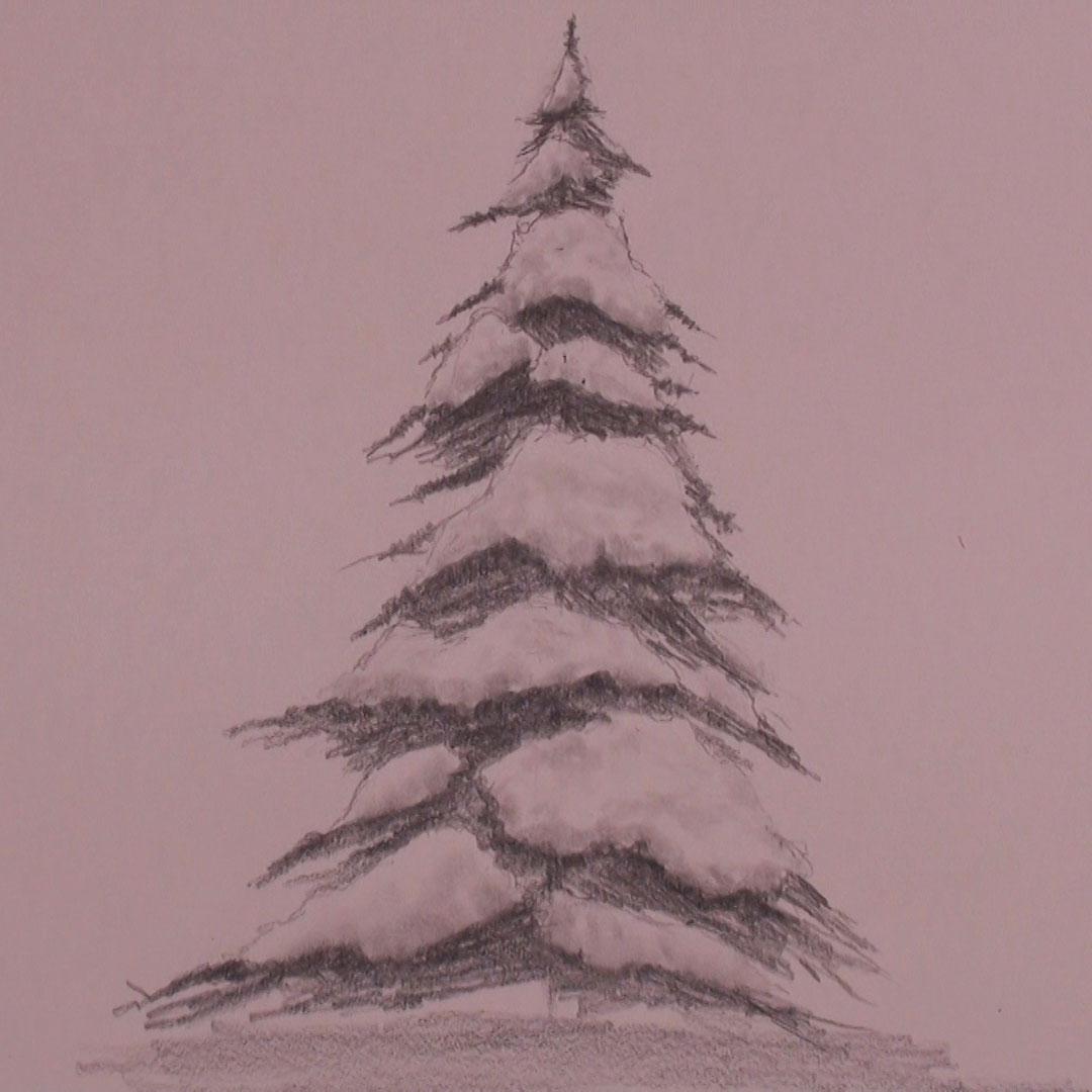 Snowy Pine Tree Drawing